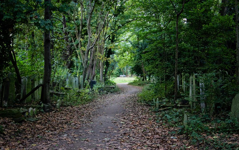 Photo Diary: Tower Hamlets Cemetery Park