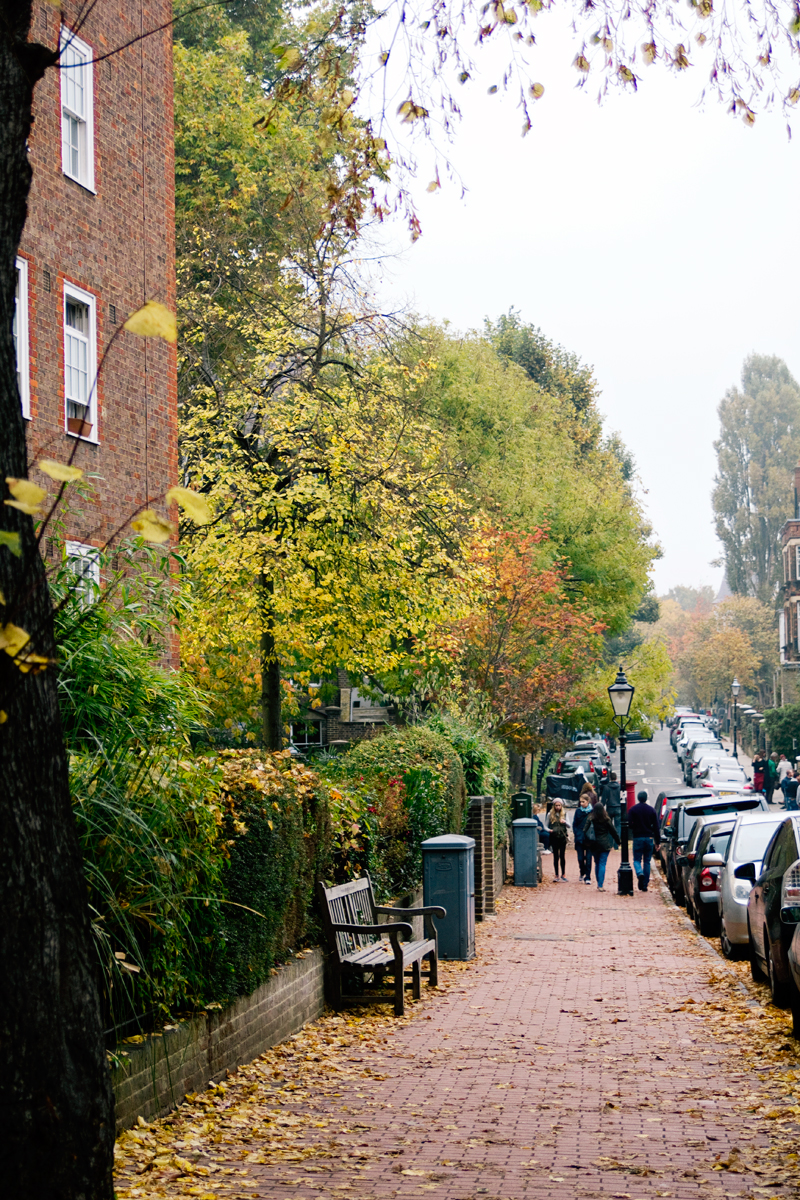 hampstead10